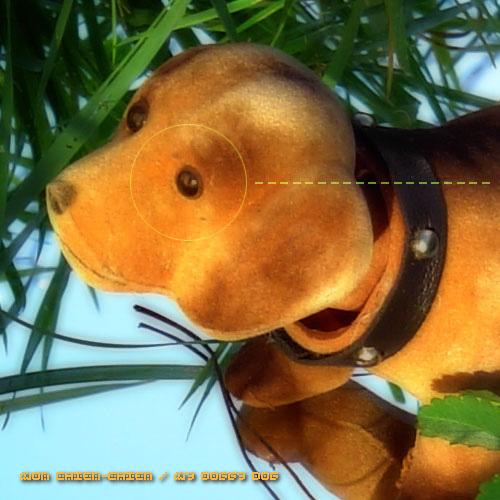 TTR004 – Doggy 02 (KPHB – 2005)